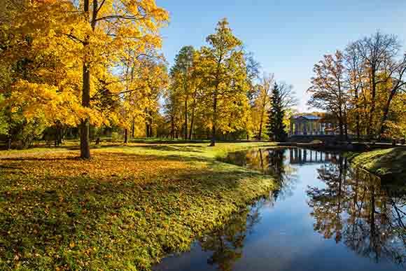 俄罗斯留学|免费留学|俄罗斯国立师范大学