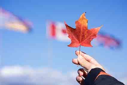 加拿大留学|加拿大大学|留学申请